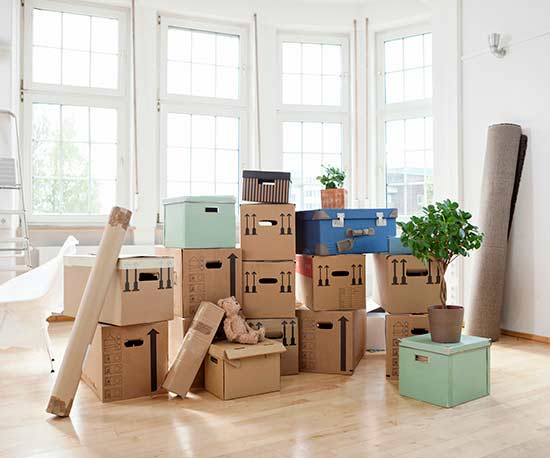 Things you Need When Moving Into a New House