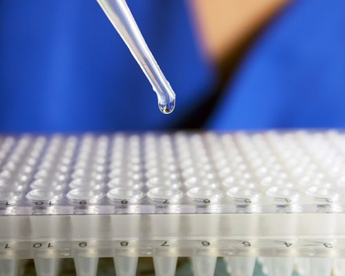 What You Need To Know About Regenerative Medicine